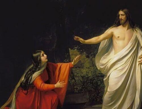 Santa María Magdalena  –  22 de Julio