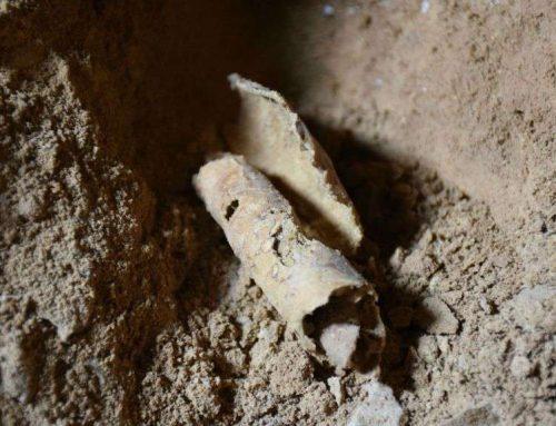 Acantilados de Qumran – una expedición en busca de nuevos rollos del Mar Muerto