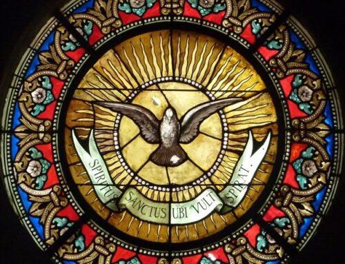 """9º Día Decenario al Espíritu Santo – """"¡Oh, Espíritu de gozo y de paz!"""""""