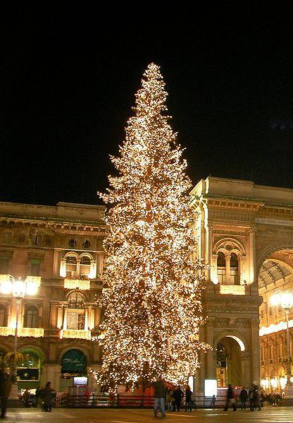 El árbol de Navidad - sus orígenes y sentido cristiano 3