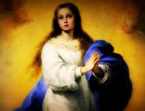 La Inmaculada Concepción de la Virgen María –