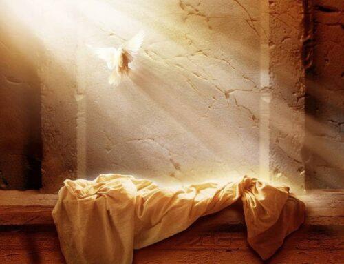 """La Resurrección de Jesús – """"Prohibido robar cadáveres"""""""