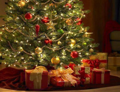 El árbol de Navidad – Una tradición con origen cristiano