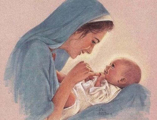 """30 de noviembre: """"María, la llena de gracia"""" – Novena a la Inmaculada (día 1º)"""