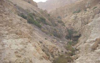 Cueva de Adulán, donde se escondió el rey David - Tierra Santa 3