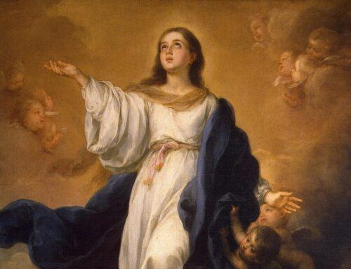 Novena a la Inmaculada Concepción de la Virgen