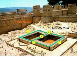 La piscina bíblica de Betesda, ¿mito o realidad? - Jerusalén 5