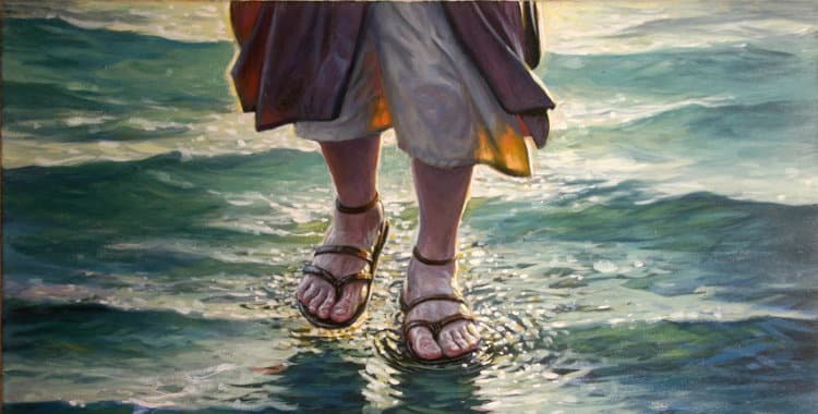 """Mar de Galilea - """"Esto estaban viendo Jesús y los apóstoles"""" 3"""
