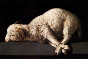 """¿Sabes por qué a Jesús se le llama el """"Cordero de Dios""""? 6"""