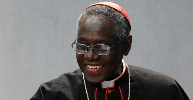 """Cardenal Sarah, 50 años de sacerdote - """"Soy fiel al Papa. Algunos quieren oponernos"""" 1"""