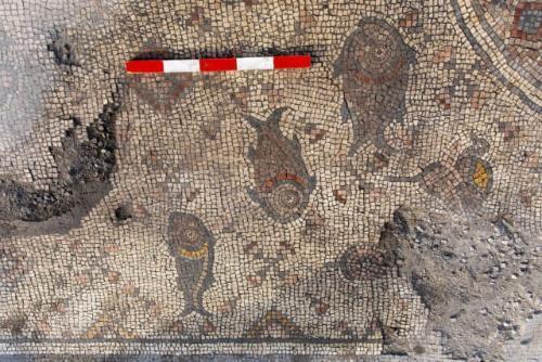 Mosaico descubierto en Israel podría señalar el lugar del milagro de la multiplicación de los panes y los peces 1