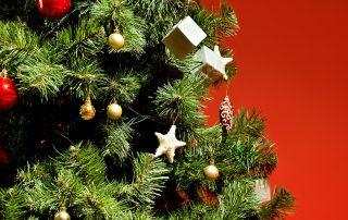 ¿Cuándo se pone el árbol de Navidad? - ¿Qué dice la tradición? 5