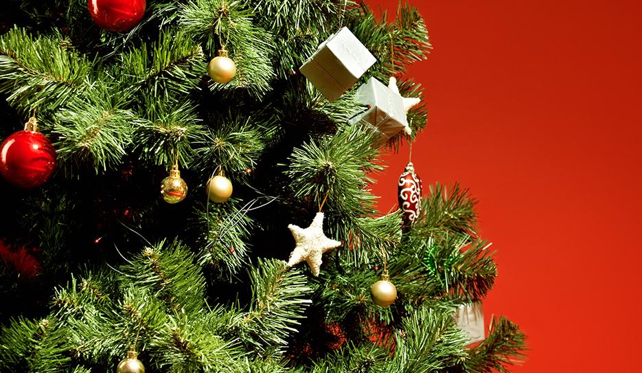 ¿Cuándo se pone el árbol de Navidad? - ¿Qué dice la tradición? 1