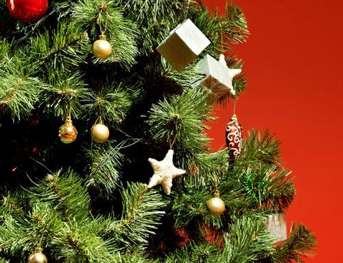 ¿Cuándo se pone el árbol de Navidad? – ¿Qué dice la tradición?