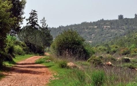 Una aldea llamada Emaús - Tierra Santa 1