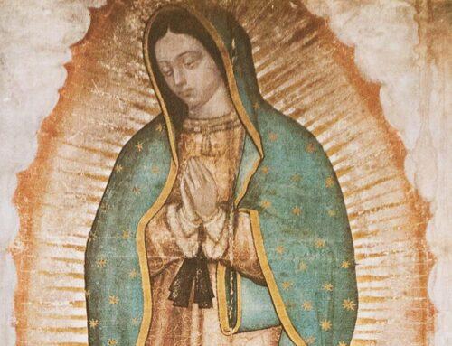 Nuestra Señora de Guadalupe – 12 diciembre