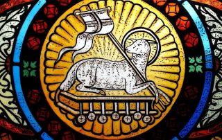 """¿Sabes por qué a Jesús se le llama el """"Cordero de Dios""""? 5"""