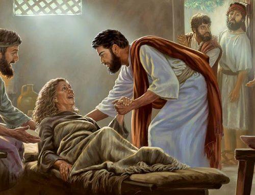 ¿Qué actitud debe tener un cristiano ante las epidemias?
