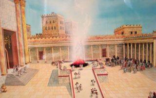 La Pascua judía y la Última Cena - Los sacrificios de la Antigua Ley 7