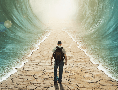 Máster en Estudios Bíblicos – Cómo llevar el mensaje de la Biblia a la sociedad actual