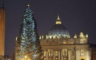 """Nacimiento y árbol de Navidad del Vaticano serán """"signo de esperanza"""" contra el COVID 7"""