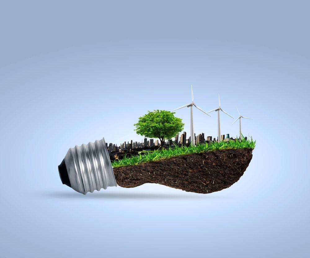La acallada labor de la Iglesia Católica en favor del medio ambiente 2