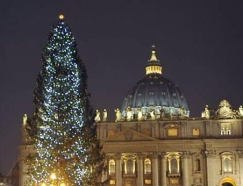 """Nacimiento y árbol de Navidad del Vaticano serán """"signo de esperanza"""" contra el COVID"""