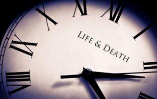 """""""Sin miedo a la vida y sin miedo a la muerte"""" - 2"""