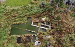 Betsaida - El lugar de la multiplicación de los panes y los peces, sumergido por las inundaciones 1