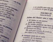 Los salmos, su historia y origen