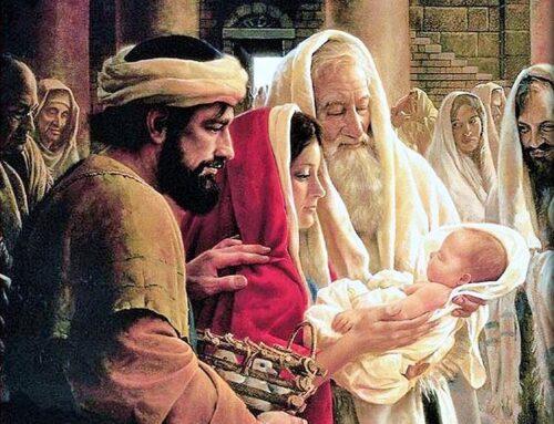 Presentación del Señor y Purificación de la Virgen María – 2 de Febrero