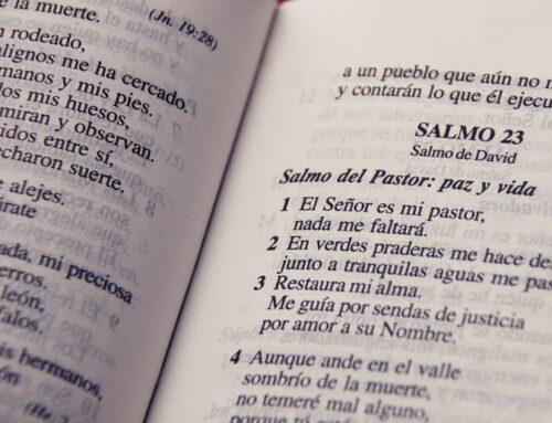¿Qué son los salmos y para qué sirven?
