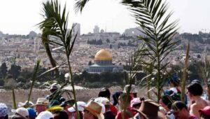 Ramos en Jerusalén