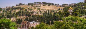 Getsemani
