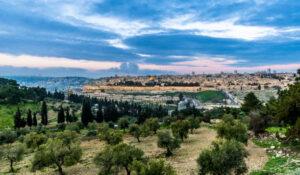 Getsemaní: olivos, textos bíblicos y arqueología - Jerusalén 1