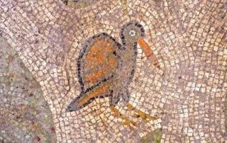 Descubierto un valioso mosaico en Yavne - En el centro de Israel 1